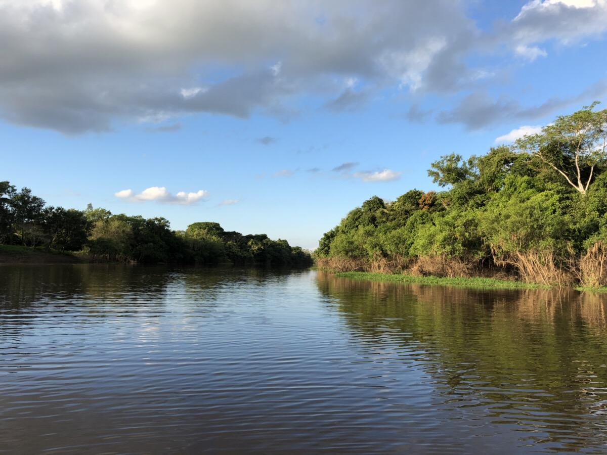 アマゾン川2