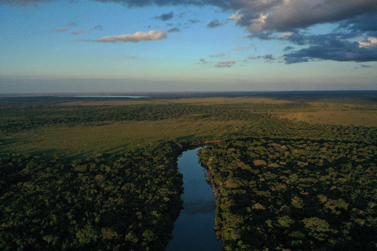 アマゾン川3