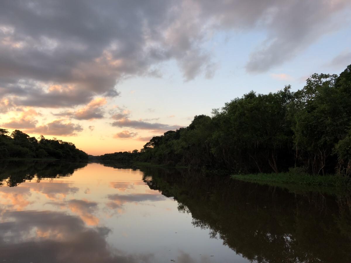 アマゾン川4