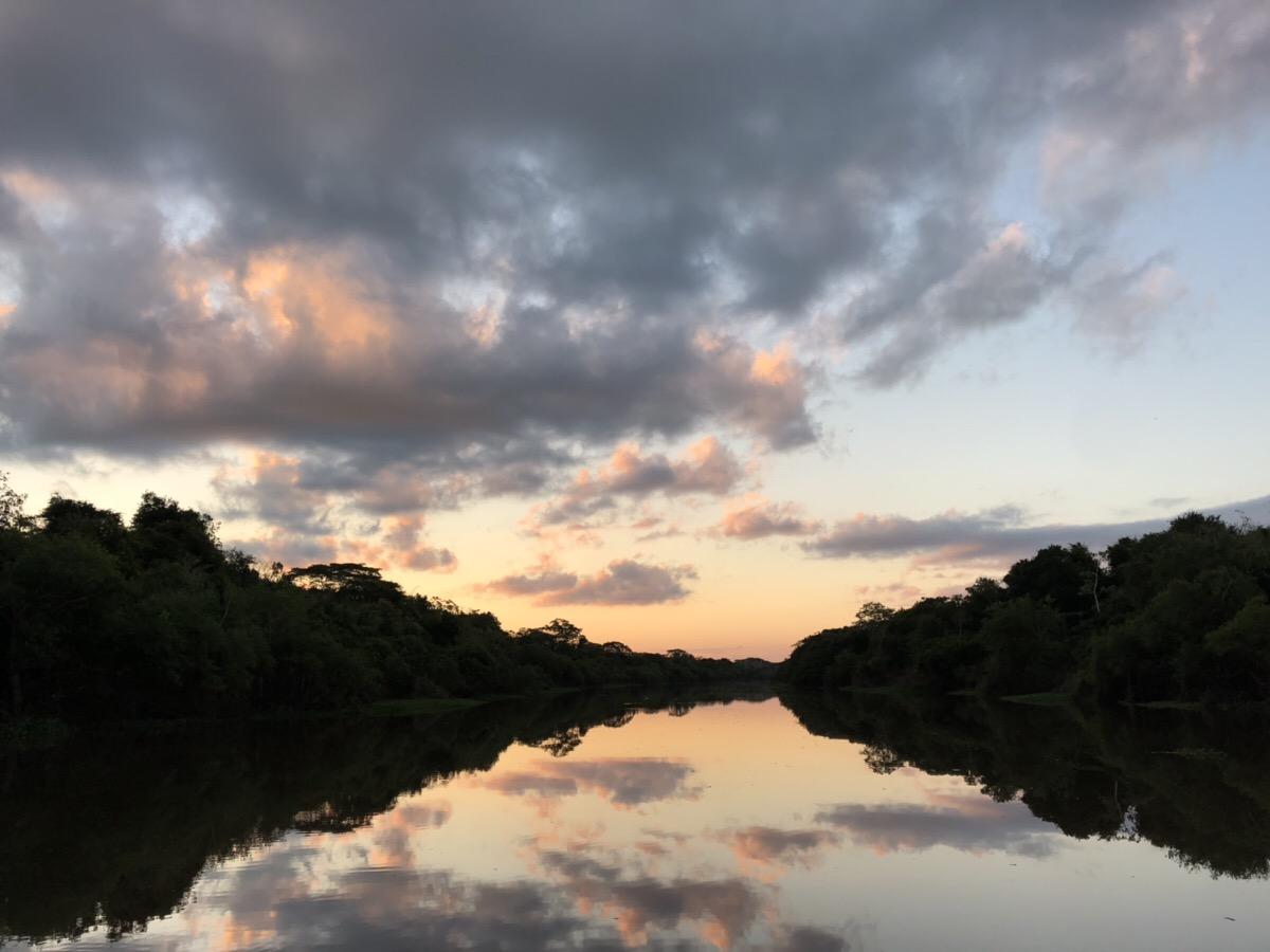 アマゾン川5